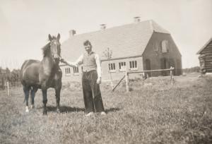 dalfsen_foto_1953_eerste_paard_bruintje