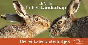 FB-InHetLandschap-LenteHazen752x387
