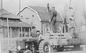 Hoogstam werd in 1962 vervangen door laagstam
