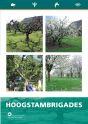 Hoogstambrigades_3_luik_def.indd