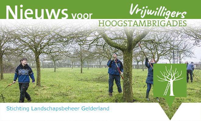 header-hoogstam-660-03