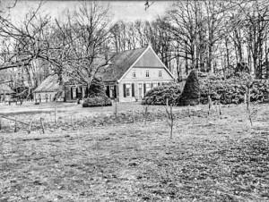 Hilbelink, circa 1950
